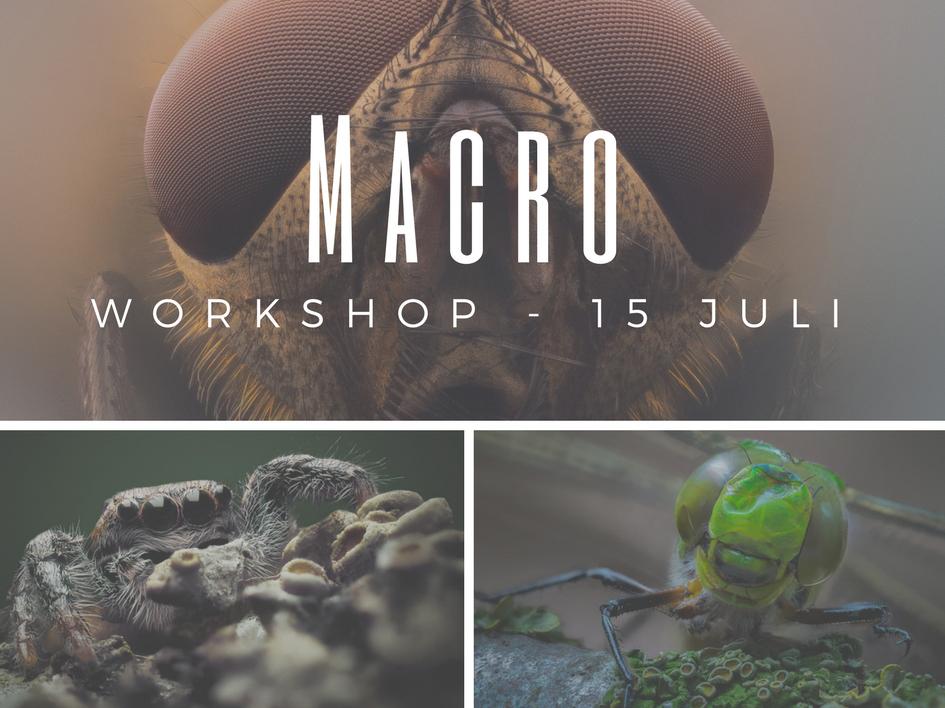 macro workshop 15 juli